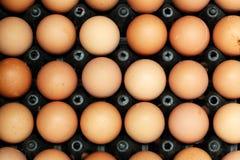 堆鸡蛋 免版税库存照片
