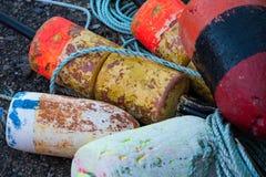 堆龙虾浮体 图库摄影