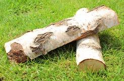 堆从白桦树树的被切开的日志木柴 免版税库存照片