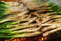 Calcots,加泰罗尼亚的甜葱 免版税库存照片