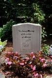 堕胎墓碑 免版税库存图片