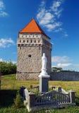 堡垒中世纪塔 图库摄影