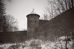 堡垒中世纪老塔 免版税图库摄影