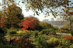 堡垒从事园艺nyc公园tryon 库存照片