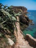 堡垒圣约翰浸礼会教友在Berlenga海岛,葡萄牙 库存图片