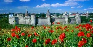 堡垒在Kamenetz-Podolsk 免版税图库摄影