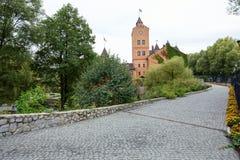 堡垒在Radomyshl,乌克兰 库存照片