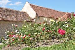 堡垒庭院rasnov 库存照片