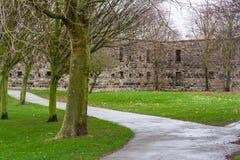 堡垒无盖二轮轻便马车艾塞克斯英国 库存图片