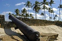 堡垒桔子、大炮和棕榈树,巴西 免版税库存照片