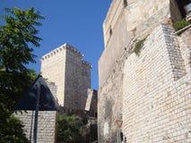 堡垒的古老石墙的看法 免版税图库摄影