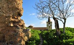 堡垒的老墙壁有不生叶的树和一个老教会墙壁的 免版税库存照片