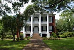 堡垒豪宅南部的rosalie 库存图片