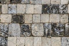 堡垒贾夫纳-斯里兰卡珊瑚砖  免版税库存图片
