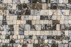 堡垒贾夫纳-斯里兰卡珊瑚砖  免版税库存照片