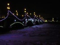 堡垒冻结的neva保罗・彼得・彼得斯堡多雪的st冬天 库存照片