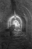 堡垒Pickens 免版税库存图片