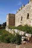 堡垒romes废墟 库存照片