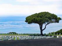 堡垒Rosecrans国家公墓,圣地亚哥,加利福尼亚 库存照片