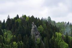 堡垒Urich 免版税库存照片