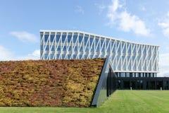 维堡市政厅在丹麦 图库摄影