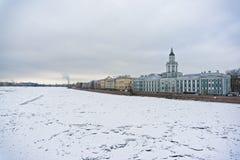 堤防neva彼得斯堡河st大学视图 免版税库存图片
