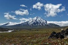 堪察加山风景:Bolshaya乌季纳火山火山 免版税库存照片
