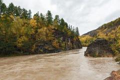 堪察加秋天风景:流动在roky山中的河 库存照片