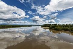 堪察加美好的夏天风景:堪察加河 免版税库存图片