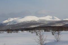 堪察加,山,寒带草原, Sobolewski地区 库存图片