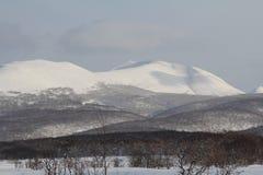 堪察加,山,寒带草原, Sobolewski地区 库存照片