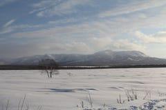 堪察加,山,寒带草原, Sobolewski地区 免版税库存照片