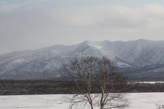 堪察加,山,寒带草原, Sobolewski地区 免版税库存图片