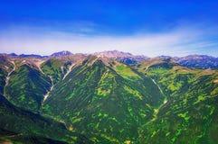 堪察加 松鸡爱本质歌曲通配木头 绿色领域和火山 从直升机的视图 免版税库存照片