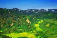 堪察加 松鸡爱本质歌曲通配木头 绿色领域和火山 从直升机的视图 图库摄影