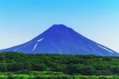 堪察加 松鸡爱本质歌曲通配木头 绿色领域和火山 免版税库存照片