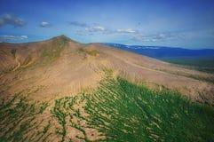 堪察加 松鸡爱本质歌曲通配木头 绿色领域和火山 库存照片