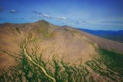 堪察加 松鸡爱本质歌曲通配木头 绿色领域和火山 库存图片