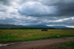 堪察加 绿色领域和火山 松鸡爱本质歌曲通配木头 免版税图库摄影