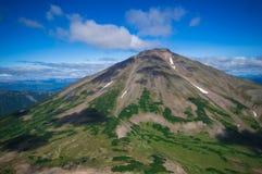 堪察加 绿色领域和火山 松鸡爱本质歌曲通配木头 库存照片