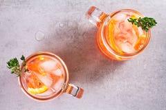 堪蓓莉开胃酒和苦艾酒鸡尾酒用桔子,装饰用麝香草 免版税库存图片