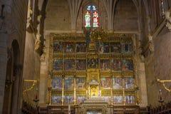 组塑内部圣伊西多大教堂  免版税库存照片