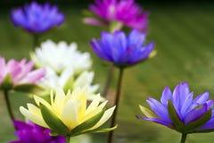 塑料五颜六色的装饰莲花在池塘,台北 免版税库存图片