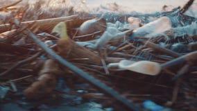 塑料在黑海滩倾销的瓶和其他垃圾 危机生态学环境照片污染 影视素材
