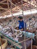 塑料工业 库存图片