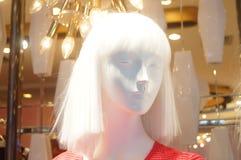 塑料时装模特儿头  库存图片