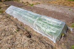 塑料温室 免版税库存照片