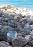 塑料瓶在游人的海滩 库存图片