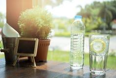 塑料瓶装水和玻璃用切片柠檬和冰块 库存照片
