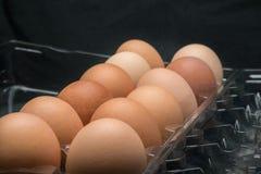 塑料纸盒新鲜的有机棕色自由放养的鸡蛋 免版税库存照片